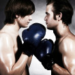 Stock Photo: Two boxers