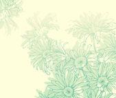 Gentle daisy. — Stock Vector