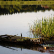 Boat on the shore of a picturesque lake - Foto Stock