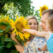 Family in sunflowers — Stock Photo