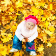 Baby in autumn leaves — Stok fotoğraf