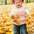 Toddler in autumn park — Stockfoto