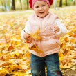 Toddler in autumn park — Foto de Stock