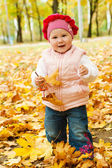 Toddler in autumn park — Stock Photo