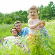 Royalty-Free Stock Photo: Toddler and her parents in the meadow