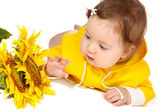 Baby looking at sunflowers — Stock Photo