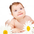 Flower  baby — Stock Photo
