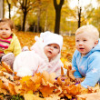 Stock Photo: Autumn babies