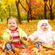 Royalty-Free Stock Photo: Babies in autumn park
