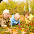 Babies on leaves — Stock Photo