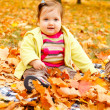 Toddler in golden leaves — Stock Photo