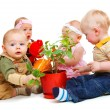 Babies group — Stock Photo