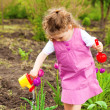 Stock Photo: Girl watering flowers