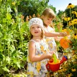 Kids in the garden — Stock Photo #5774988