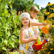 Stock Photo: Kids in the garden