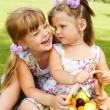 Kids with fruit basket — Stock Photo