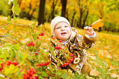 Baby over yellow leaves — Stock Photo