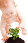 Baby touching plant — Foto Stock