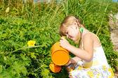 Dívka v zahradě — Stock fotografie