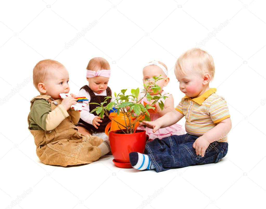 A group of beautiful babies sitting around a pot plant  Stock Photo #5771564