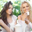 Two ladies having lunch break - Stock Photo
