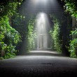 Mysterious garden - Stockfoto
