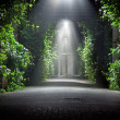 Mysterious garden - Stock Photo
