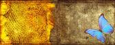 Butterfly met zonnebloem grunge — Stockfoto