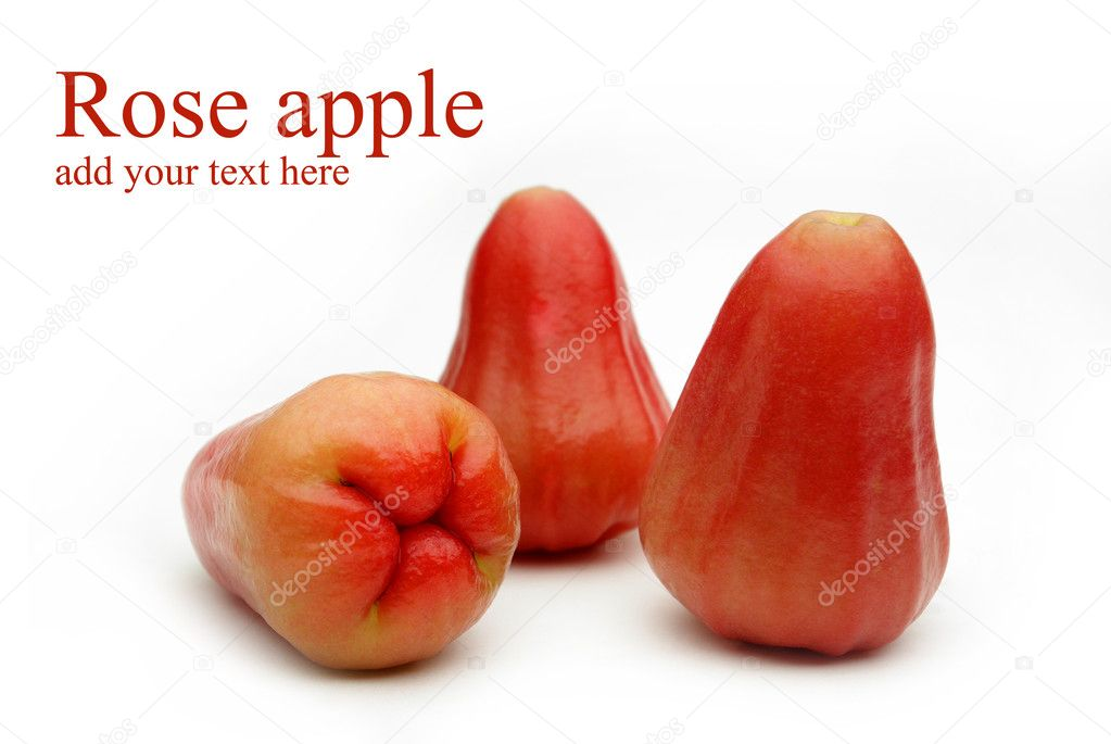 Rose apple on white background. — Stock Photo #5381674