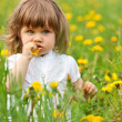 Little girl in a meadow - Stockfoto