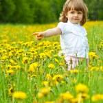 Little girl in a meadow — Stock Photo #5819173