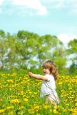 маленькая девочка в луг — Стоковое фото