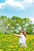 Niña en un prado — Foto de Stock