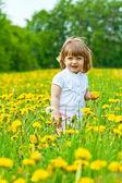 Little girl in a meadow — Stockfoto