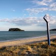 Beach at Whangamata — Stock Photo #6541911