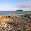 Beach at Whangamata — Stock Photo