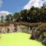 Wai-o-Tapu geothermal area — Stock Photo #6542488