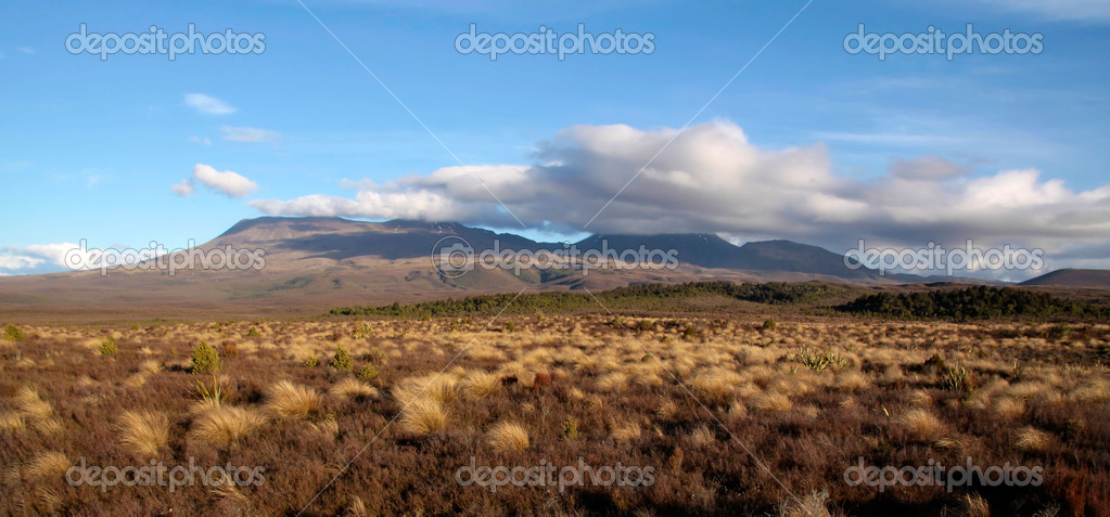 Landscape in the Tongariro National Park, Manawatu-Wanganui, New Zealand — Stock Photo #6542650