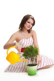 Caring woman water a plant — Stock Photo