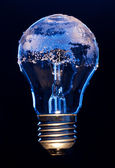 Light bulb covered with ice — Stock Photo