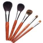 Set of makeup brushes — Stock Photo
