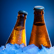 Couple beer bottles in ice - Stock Photo