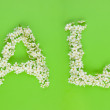 Sale sign made of white cherry tree flowers — Stock Photo #6288422