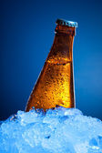 Beer bottle in ice — Stock Photo