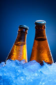 Couple beer bottles in ice — Stock Photo