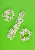 Percentage sign made of white flowers — Stock Photo