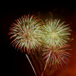 Fireworks - giant flowers of fire in the night sky — Stock Photo