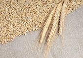 黄麻布の背景に穀物 — ストック写真