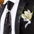 Stock Photo: Groom with boutonniere