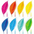 Set of colored leaves — Stock Vector